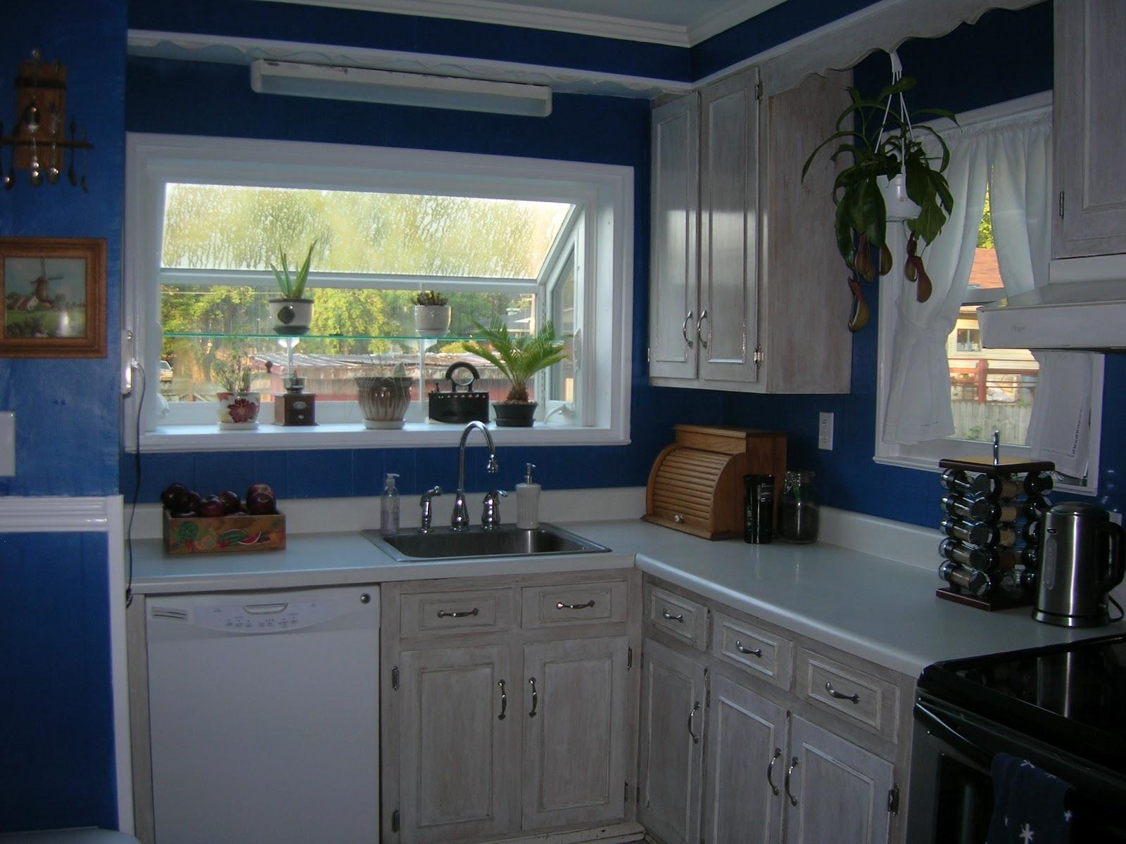 Blue Paint For Kitchen Royal Blue Kitchen Paint Cliff Kitchen