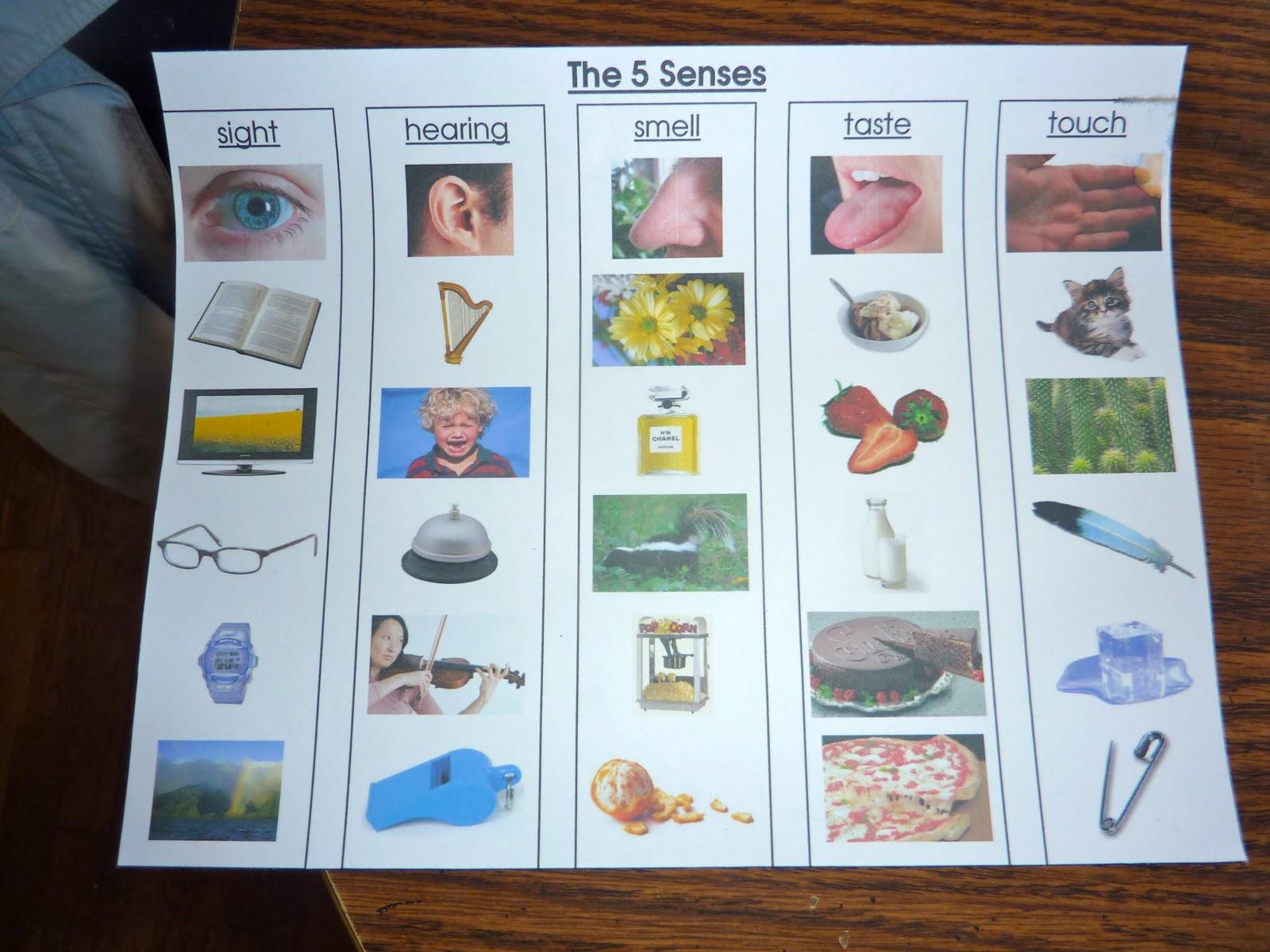 Fantastic Worksheets For Kids Free Preschoolers Kindergarten The 5 ...