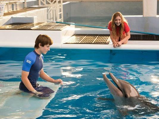 Watch online Dolphin Tale 2 2014
