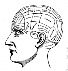 Meningkatkan Kinerja Otak Anda, HentikanIQ Lemah