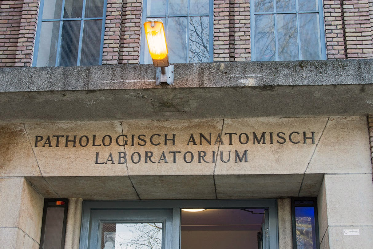 pathological anatomic lab