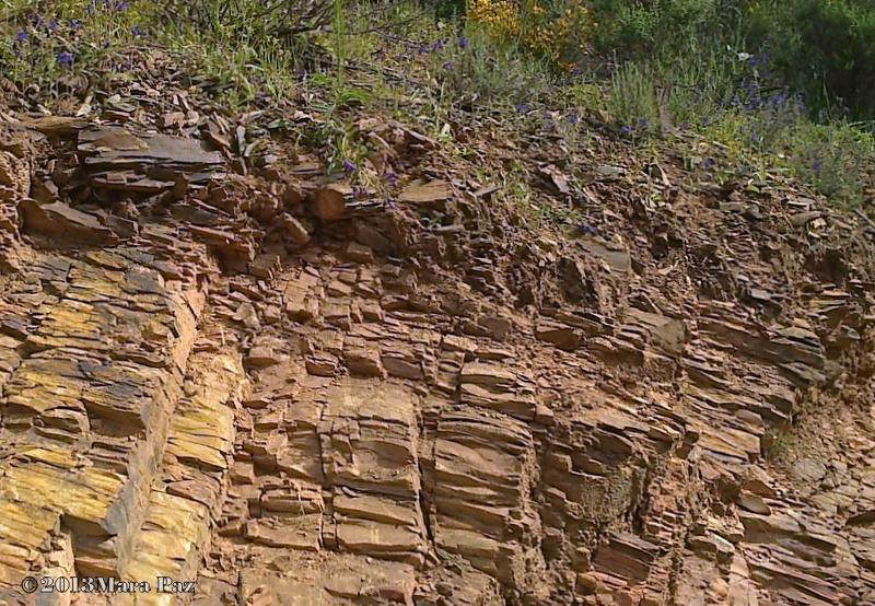 Hills around Silves