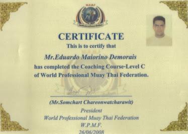 WPMF ( WOrld Professional Muay Thai Federation)
