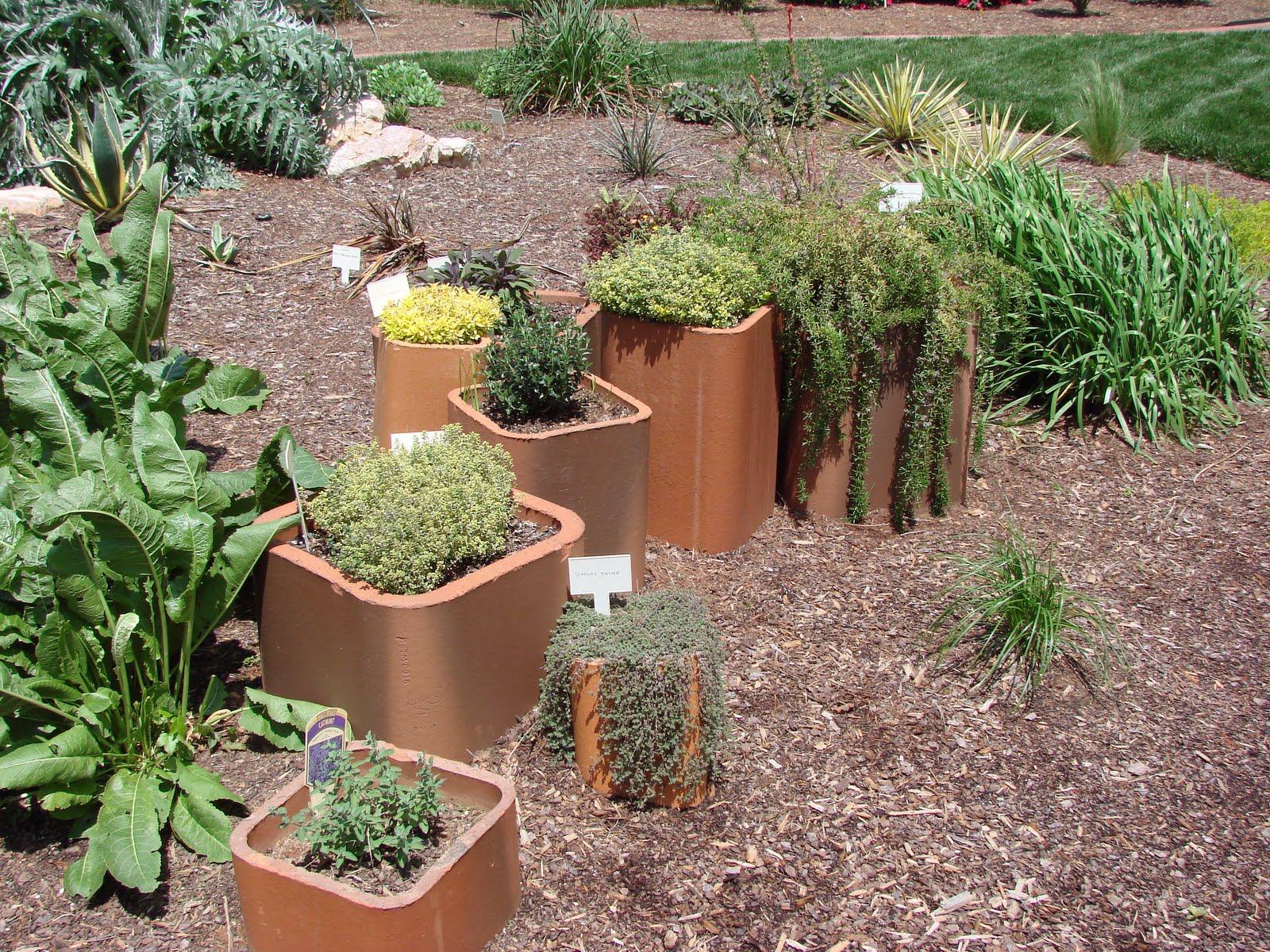 http://2.bp.blogspot.com/-F74maJb-uG4/Sz_UhDjUdeI/AAAAAAAAABw/ikr1S0tWVu0/s1600/Organ_Pipe_Herb_Garden_o.JPG
