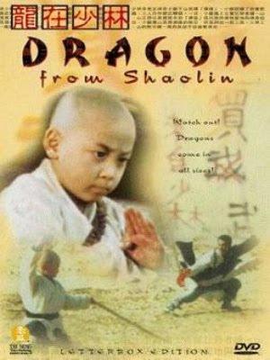 Rồng Thiếu Lâm - Dragon From Shaolin (1996)