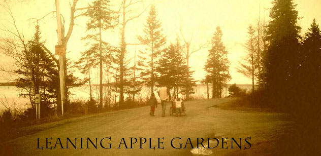 Leaning Apple Gardens