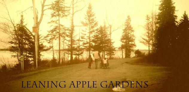 Leaning Apple Gardens