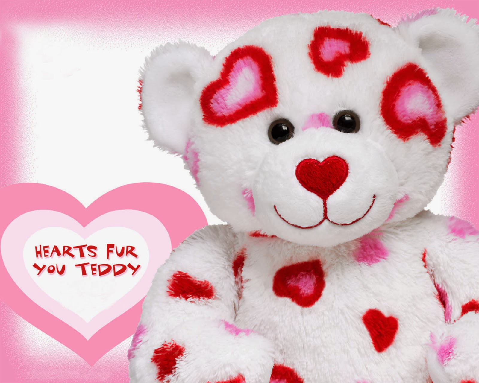 teddy bear hd wallpaper - wallpapers