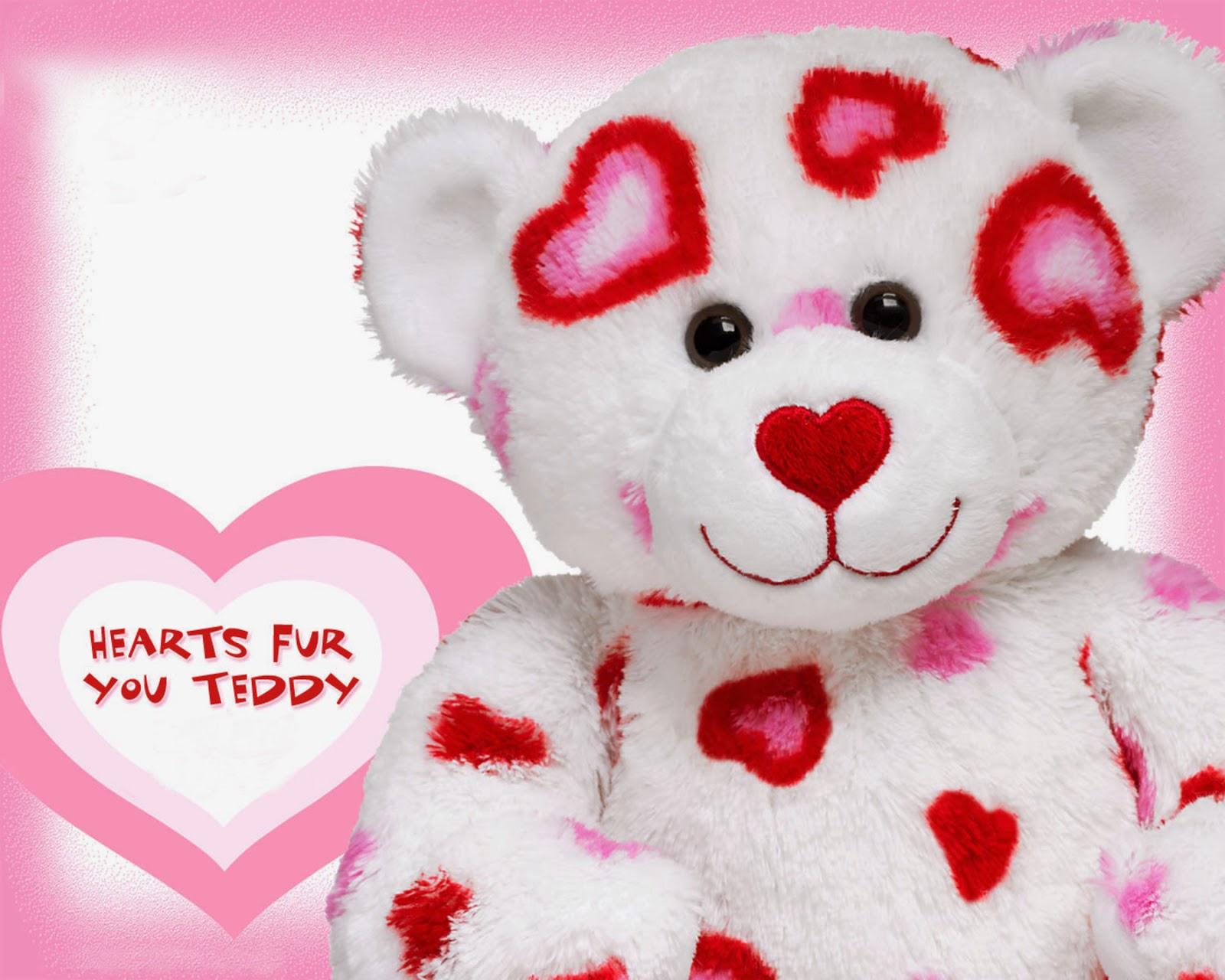 Teddy Bear Hd Wallpaper Wallpapers