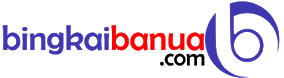 Bingkai Banua