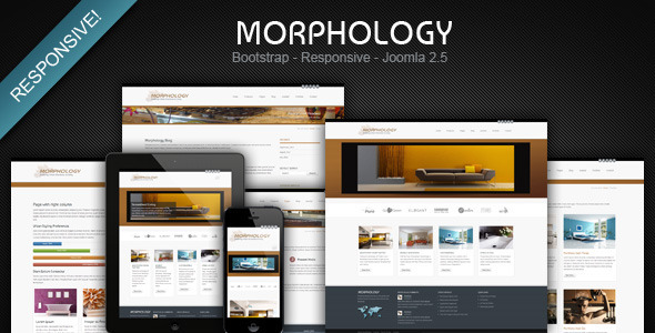 morphology responsive joomla business template