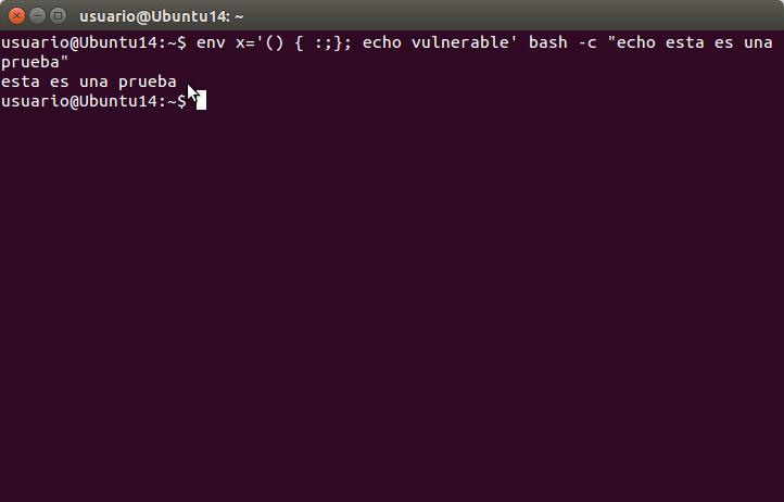 echo vulnerable' bash