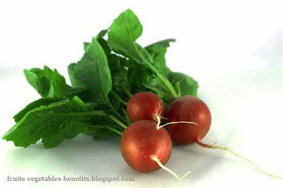 benefits_of_eating_radishes_fruits-vegetables-benefits.blogspot.com(benefits_of_eating_radishes_3)