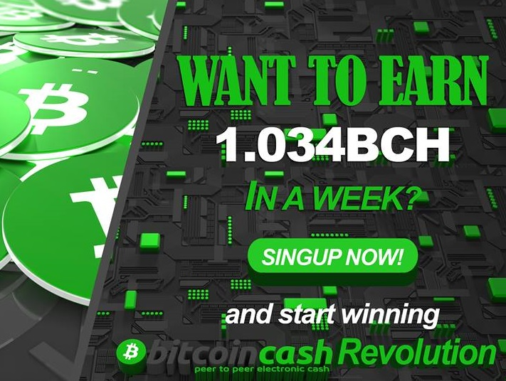Get into the Bitcoin Cash Revolution