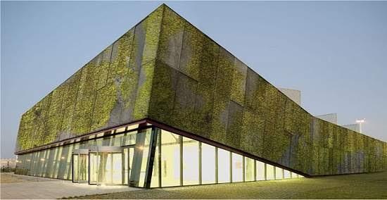 Concreto biológico cria fachadas verdes naturalmente