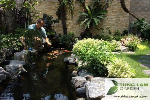 thiết kế hồ cá Koi, thi công hồ cá Koi, trang trí hồ cá Koi sân vườn, hồ cá koi cảnh quan