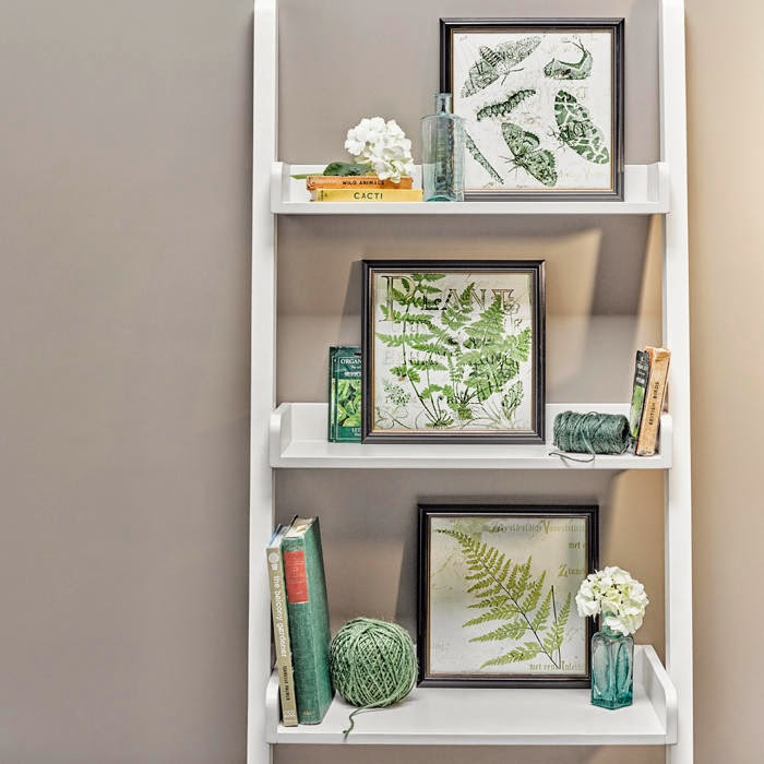 3 Pack Fern Print Wall Arts