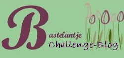 Neuer Challengeblog ab 01.07.2012
