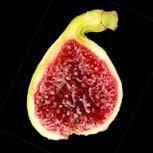 Figs : Cole de dame Blanche