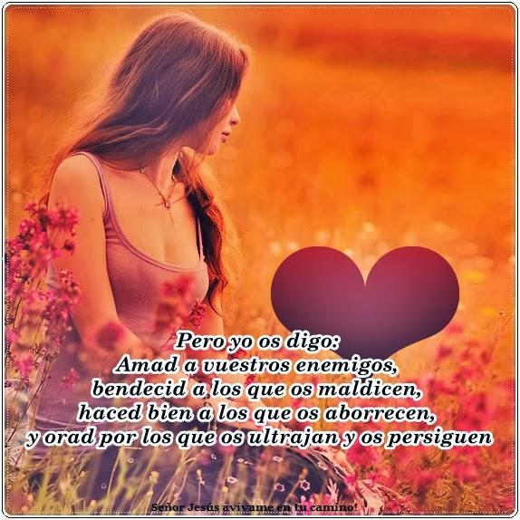 avivameentucamino.blogspot.com