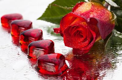 Imágenes de Amor y Postales para el 14 de febrero