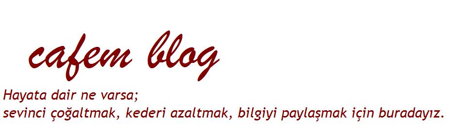 Cafem Blog