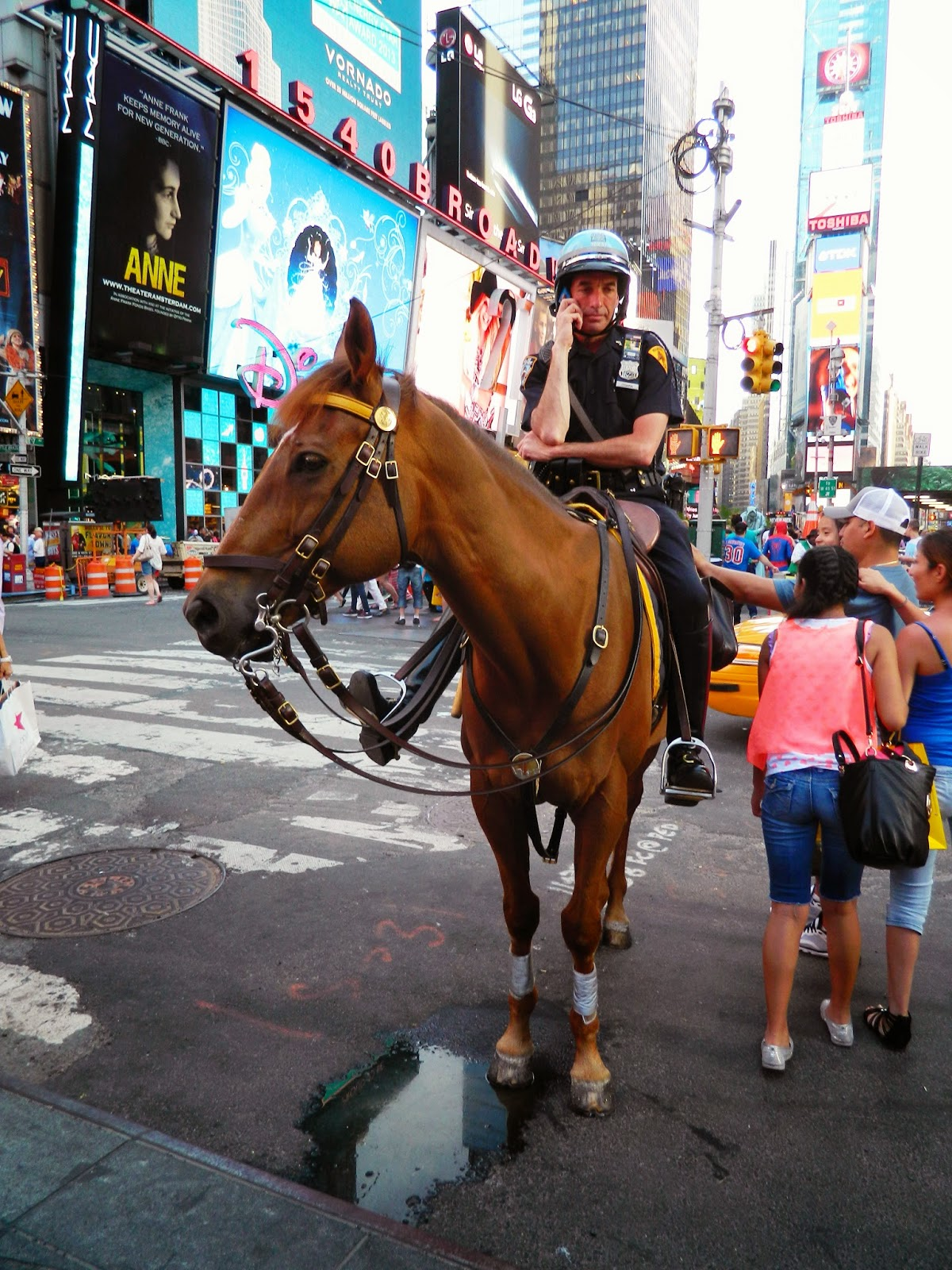 new york city times square police man horse petting busy cute