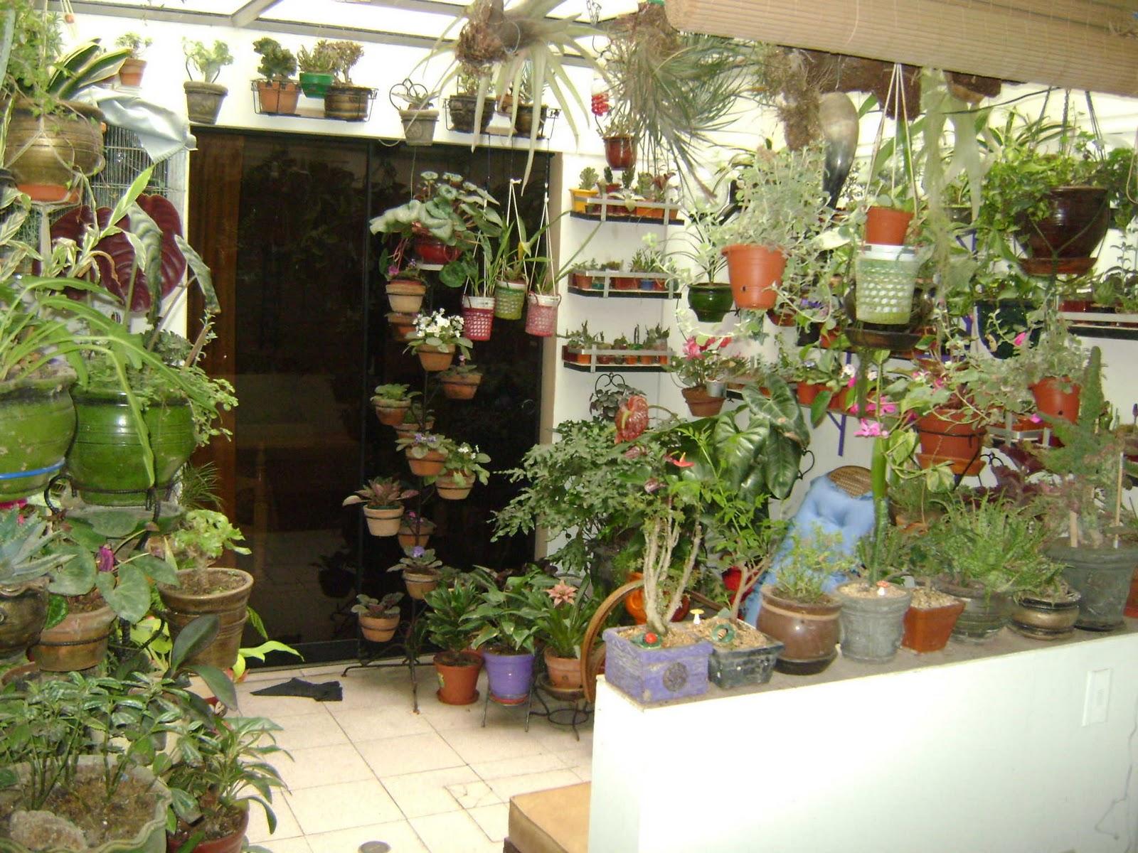 Jardines y macetas utilizacion de espacios peque os for Jardines para espacios pequenos