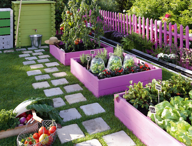 mini potagers pour tous. Black Bedroom Furniture Sets. Home Design Ideas
