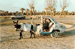 funniest pictures: donkey with a trailer made ​​of car