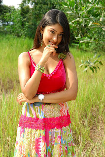 Payal Ghosh Hot Indian Girls Pics