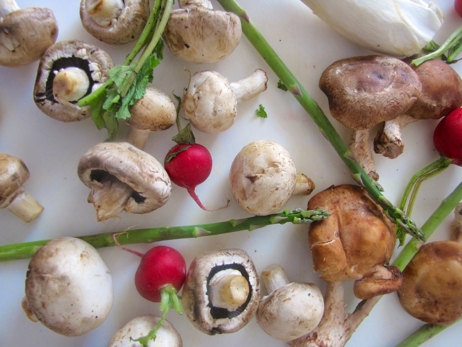 button mushroom, shiitake mushrooms, radishes and trumpet mushrooms on a white board
