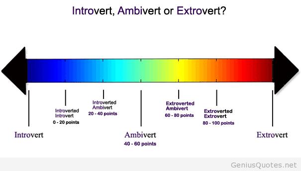 Apakah Anda Introvert, Extrovert, Atau Ambievert, Cari tau disini ( Membaca Karakter )