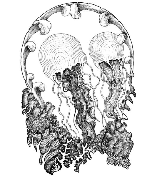 19-Jellyfish-Muthahari-Insani-Beautifully-Detailed-Ink-Drawings-and-Doodles-www-designstack-co