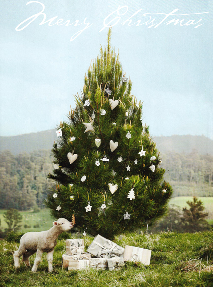 Country style chic christmas tidings for Country chic christmas