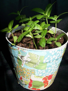 decorate plant pots with decoupage border=