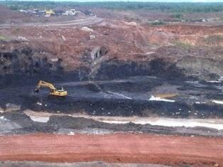 Tanah di sebamban kalimantan selatan Tembus 1.5 M