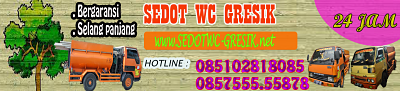 JASA SEDOT WC GRESIK 085102818085