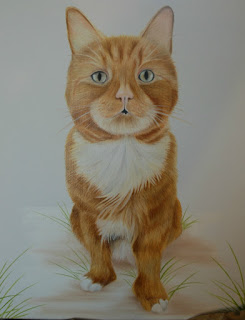 Pet Portrait cat oil on canvas