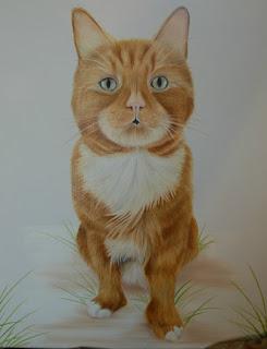 Pet Portrait cat oil on canvas