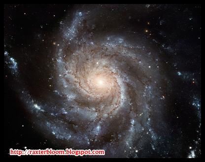 Spiral Galaxy raxterbloom.blogspot.com