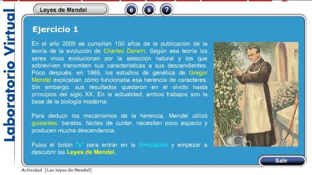 http://www.ibercajalav.net/curso.php?fcontenido=mend_mend_1.swf