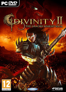 Divinity 2 The Dragon Knight Saga Pc