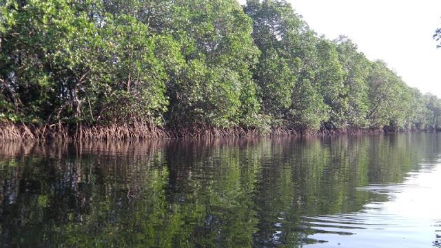 UNDANGAN: Lokakarya Konservasi Laut Indonesia.