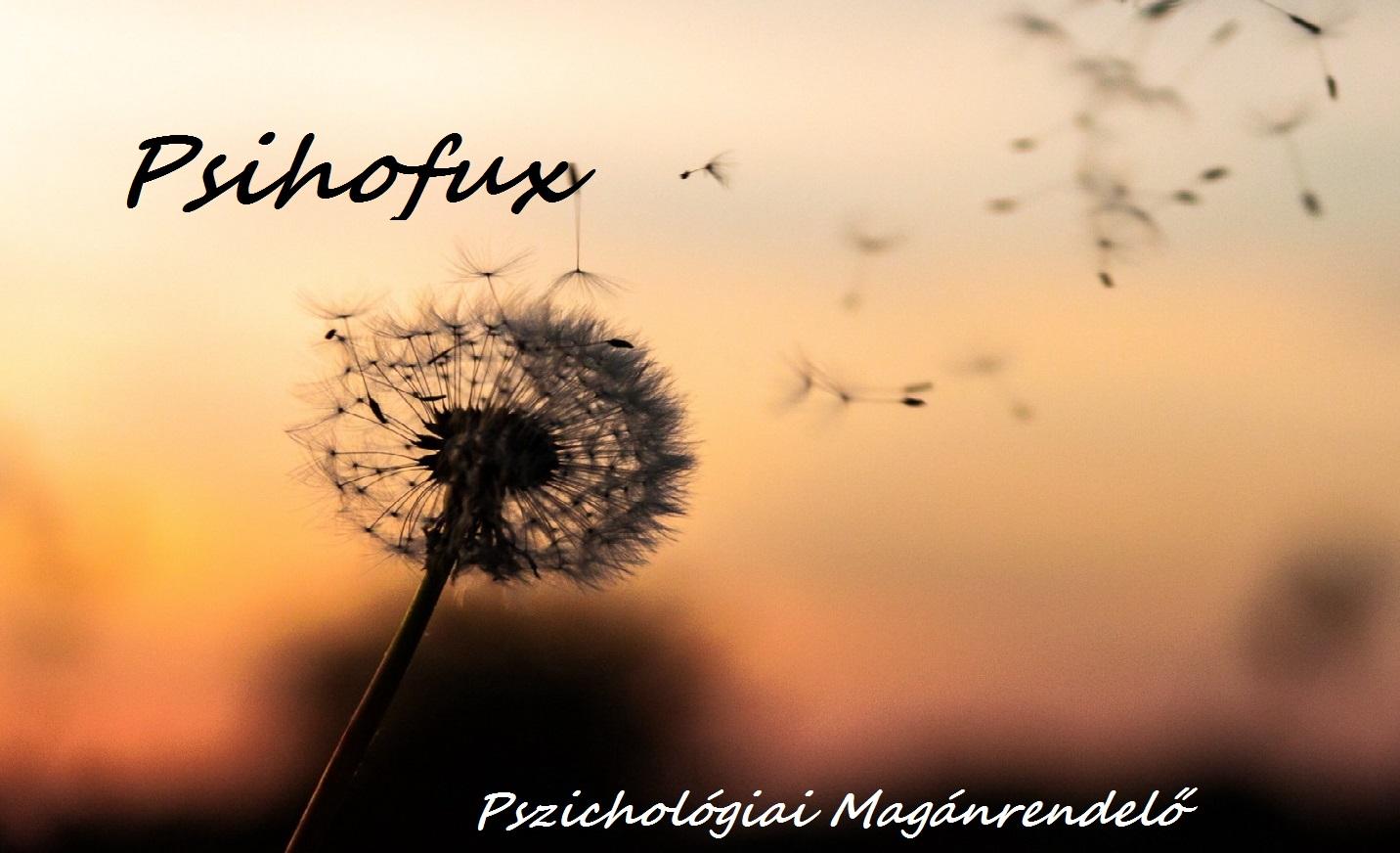 Psihofux-Pszichológiai Magánrendelő