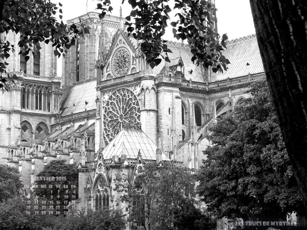 JANVIER 2015 - Wallpaper #5 : Notre-Dame de Paris, quai de Seine (N&B)