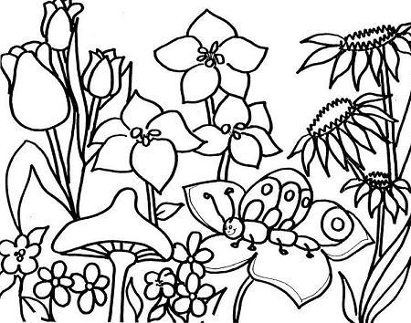 Blog MegaDiverso Primavera para colorear e imprimir