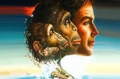 Sila Tarot: Consciência Evolutiva