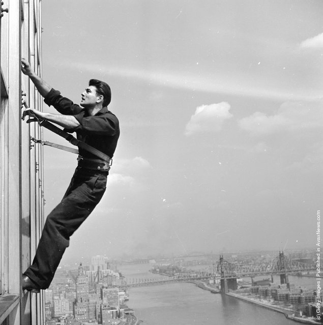 vintage everyday: Photos of Windows Cleaners in The Past