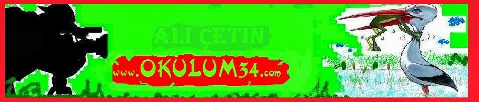 NİLGÜN İSMET AKINALAN WWW.OKULUM34.COM